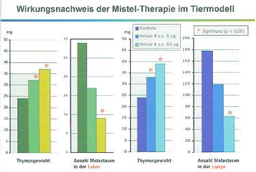Misteltherapie Krebs